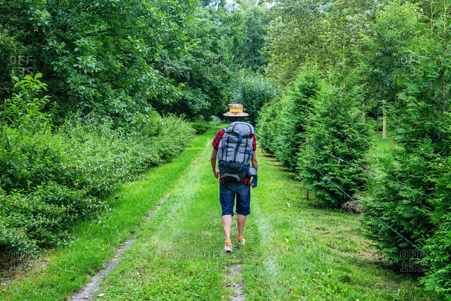 France- Strasbourg- man with travel backpack and straw hat walking on forest path