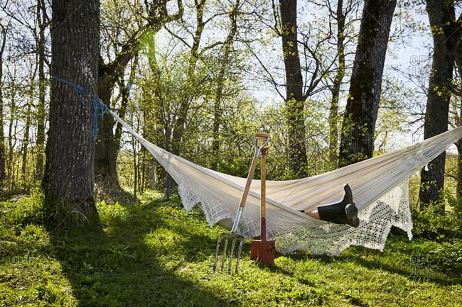 Person resting in hammock