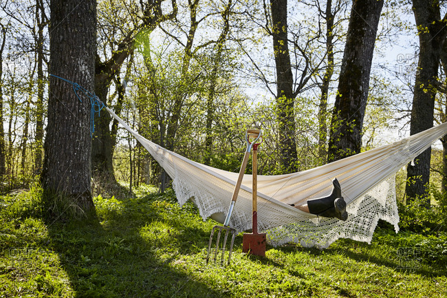 Person resting in hammock