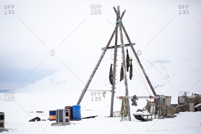 Wooden posts in winter scenery