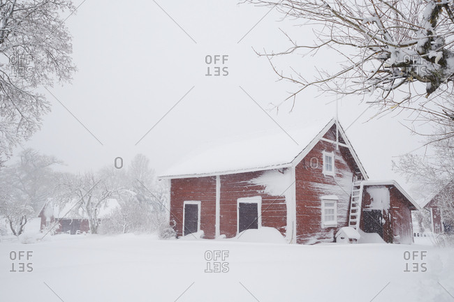 Wooden building at snowy day
