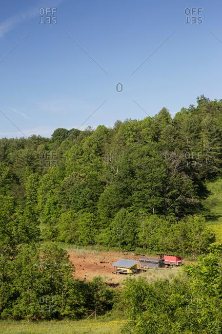 Field landscape of chicken coops on free range organic farm