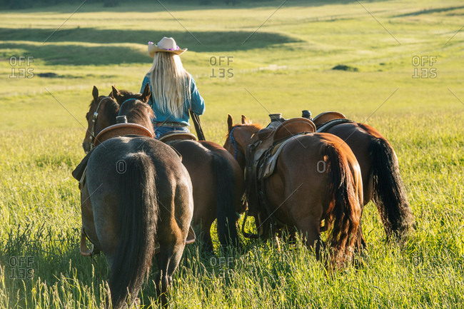 Rear view of teenage girl leading four horses, Enterprise, Oregon, United States, North America