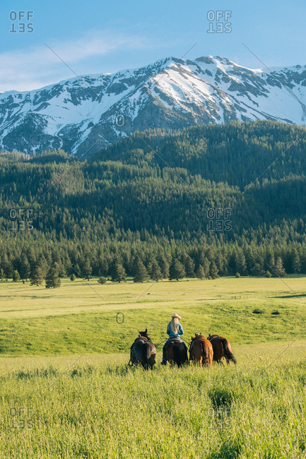 Teenage girl leading four horses by snow capped mountain, Enterprise, Oregon, United States, North America