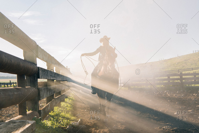 Cowboy with lasso on horse, Enterprise, Oregon, United States, North America