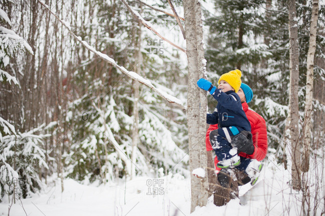 Man helping son climb tree in snow covered forest