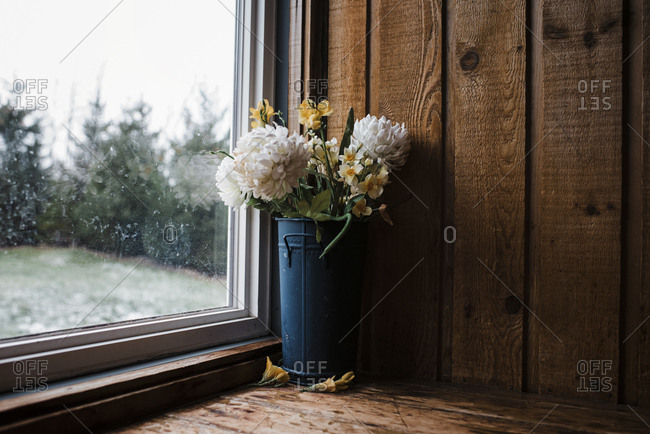 Close-up of flowers in metallic container by window