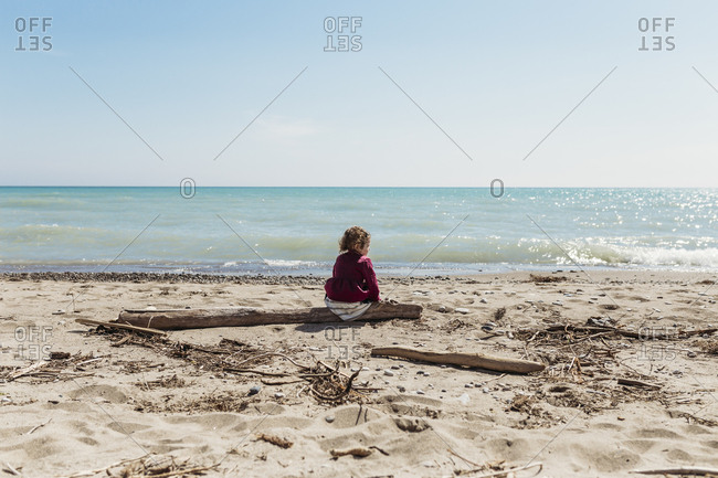 Little girl sitting on driftwood on sandy beach