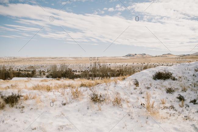 Idaho winter landscape with snow