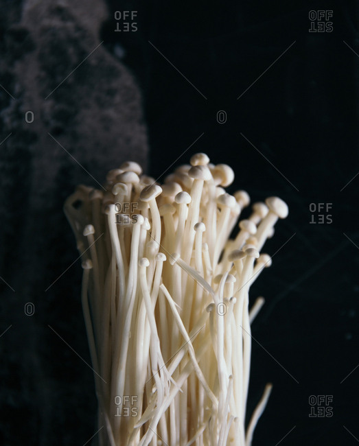 Bunch of enokitake mushrooms