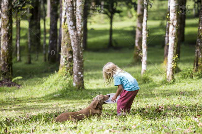 Little girl playing with her dog in park, Bedugul, Bali, Indonesia