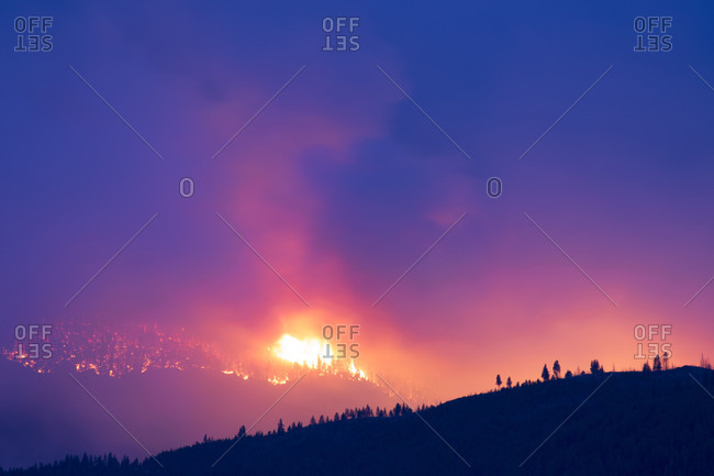 Wildfire at Lolo Peak crowns through trees on edge of Selway-Bitterroot Wilderness in the Lolo National Forest near Missoula, Montana, USA