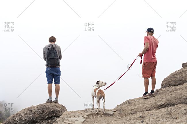 Two men with a dog standing on cliff looking out at a misty landscape
