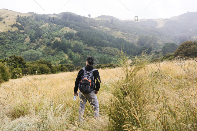 Asian man hiking in the hills of the New Zealand countryside, outside of Akaroa