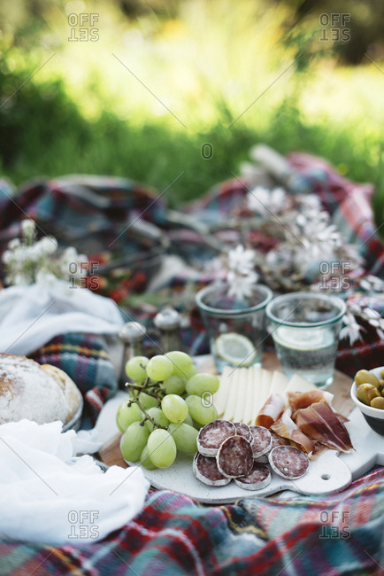 Delicious food for picnic lying on checkered blanket on sunny day.