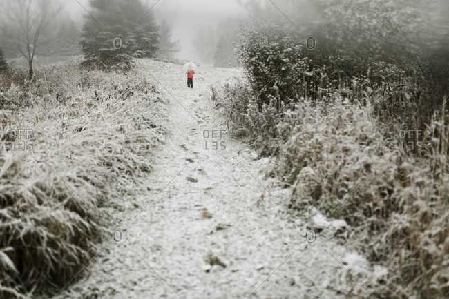 Rear view of boy with umbrella standing in forest during winter