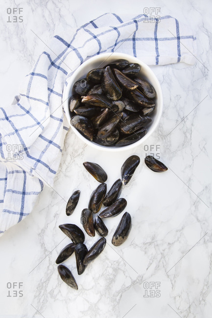 Fresh raw blue mussels
