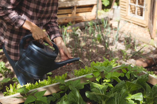 Mid section of woman watering plants in garden