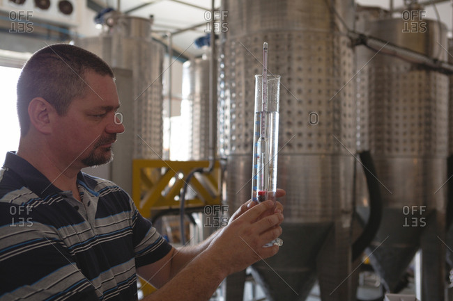 Male worker examining gin in measuring cylinder in factory