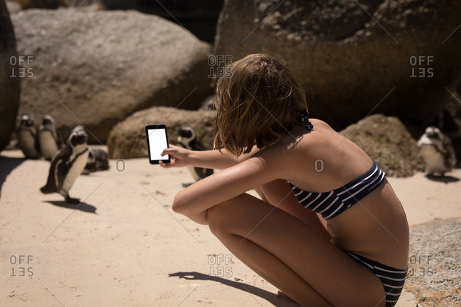 Teenage girl taking picture of penguins with mobile phone on beach
