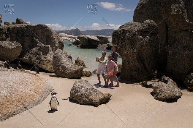 Siblings taking picture of penguin at beach on a sunny day