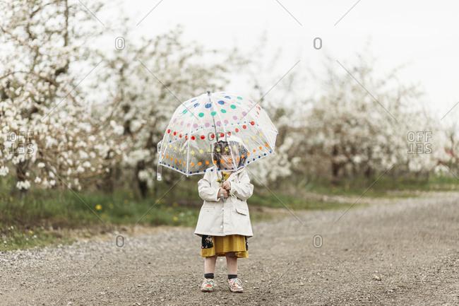Little girl holding a polka dot umbrella in the rain