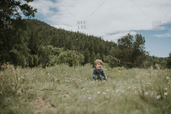 Laughing baby sitting in a meadow of wildflowers