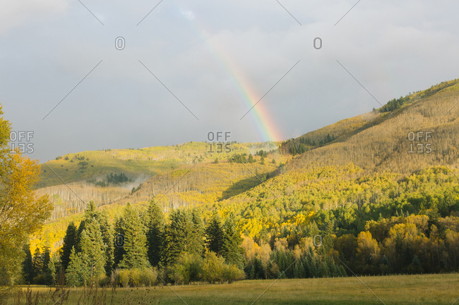 Rainbow over hills covered in Aspen trees