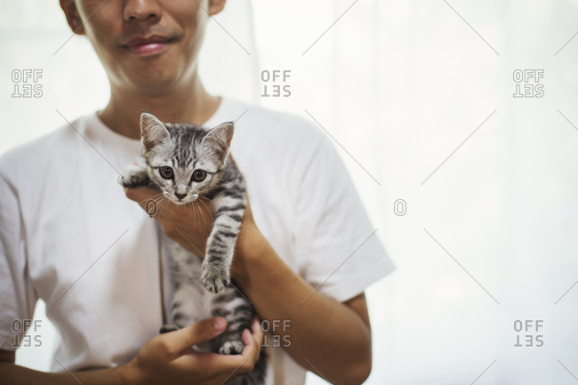 Close up of man holding calico cat with white, black and brown fur