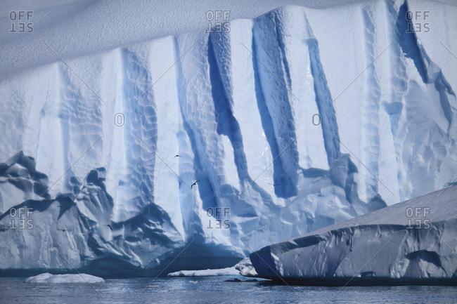 Tabular iceberg, Arctic Ocean, Greenland