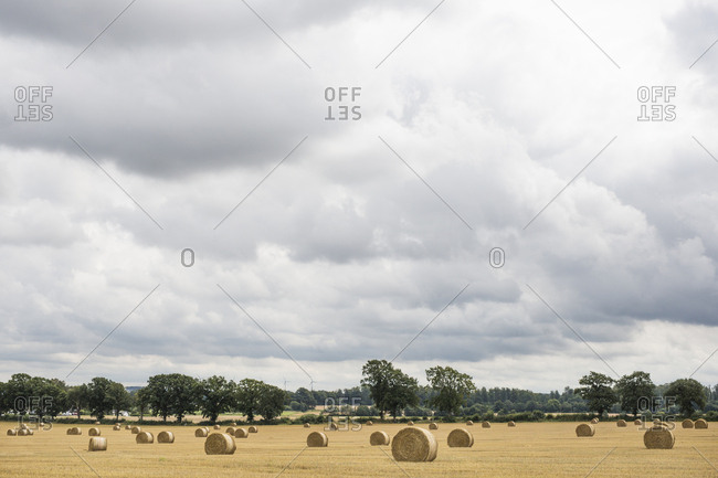 Rural landscape with hay bales