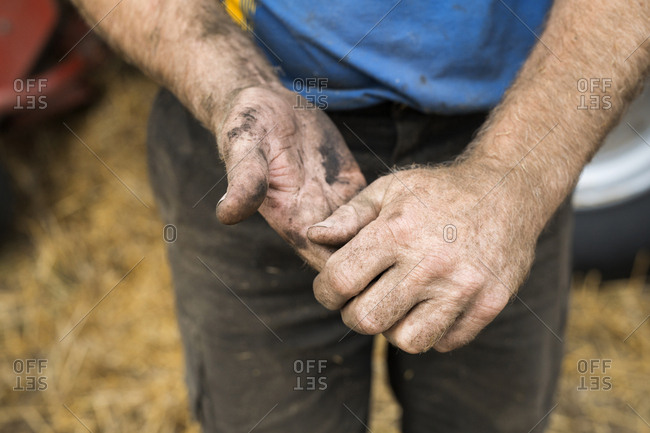 Close-up of farmer's hands