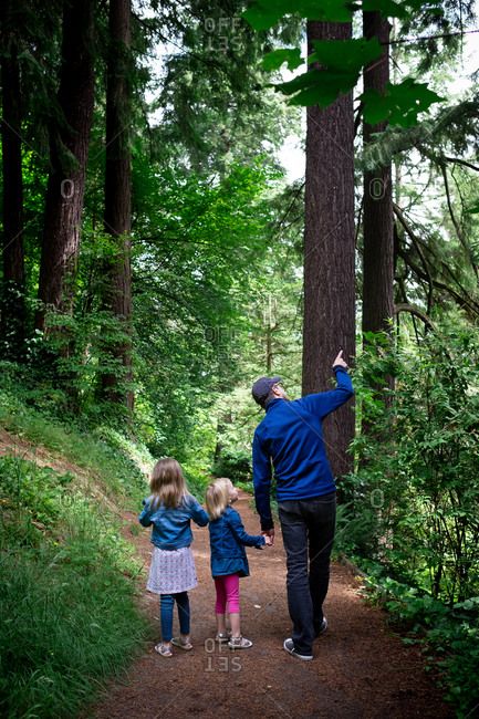 Father and two daughters walking on trail in a forest