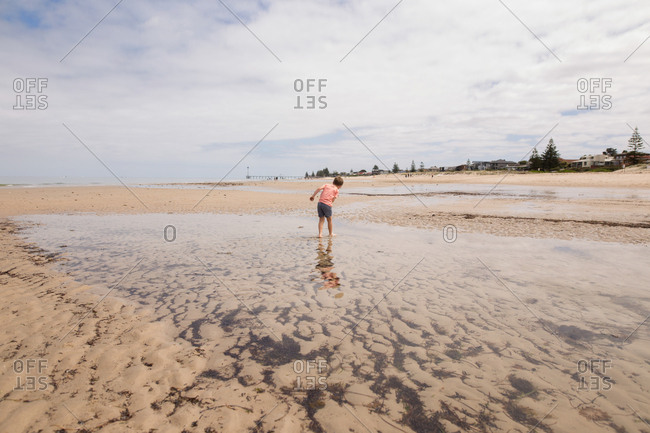 Boy wading in pool of water  on sandy beach