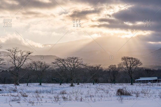 Scenic sunset in icy field