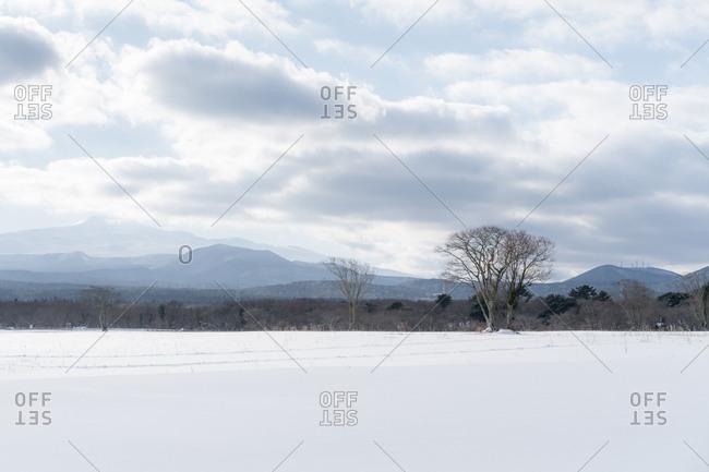 Empty snowy meadow and mountain ridges