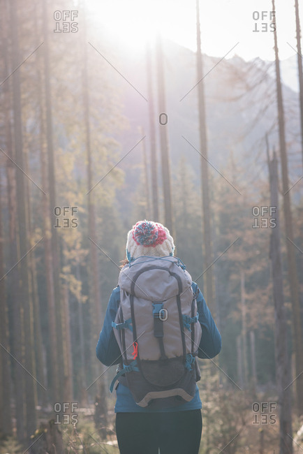 Rear view of female hiker standing with backpack in forest