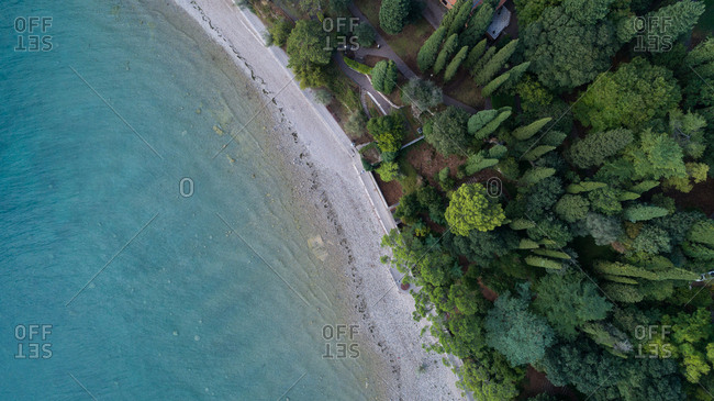 Aerial view of beautiful coastline with trees