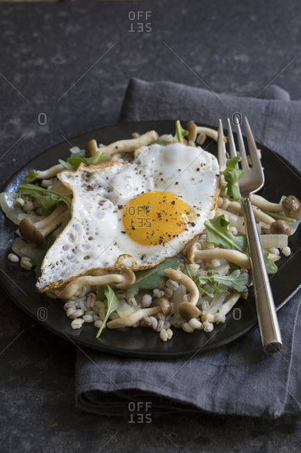 Mushroom barley dish with a fried egg