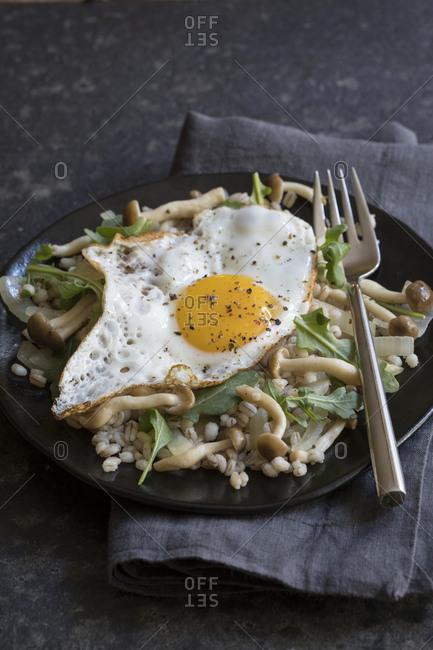 Mushroom barley dish with a fried egg