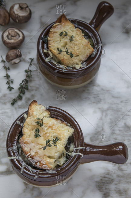 Two soup tureens with french mushroom soup