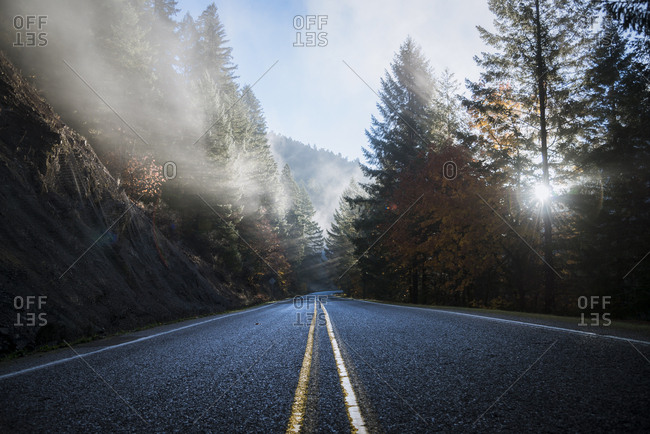 USA- Oregon- Klamath County- road in Crater Lake National Park
