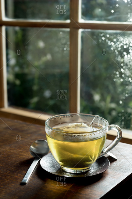 A cup of green tea in front of a window with morning dew and lush green outdoors scenery
