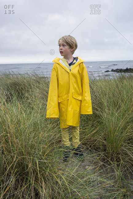 A young boy in the tussock grass at the beach in wet weather gear