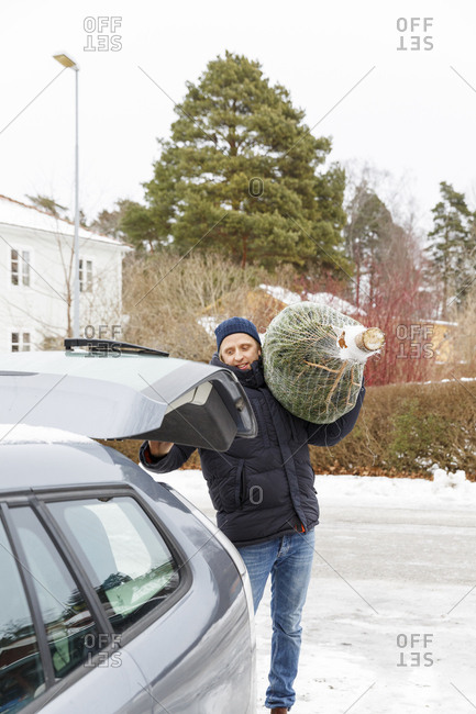 A man carrying a Christmas tree