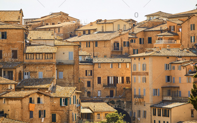View of the densely packed houses of Siena, Italy
