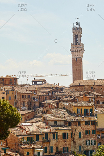 Torre del Mangia rising over the rooftops of Siena, Italy