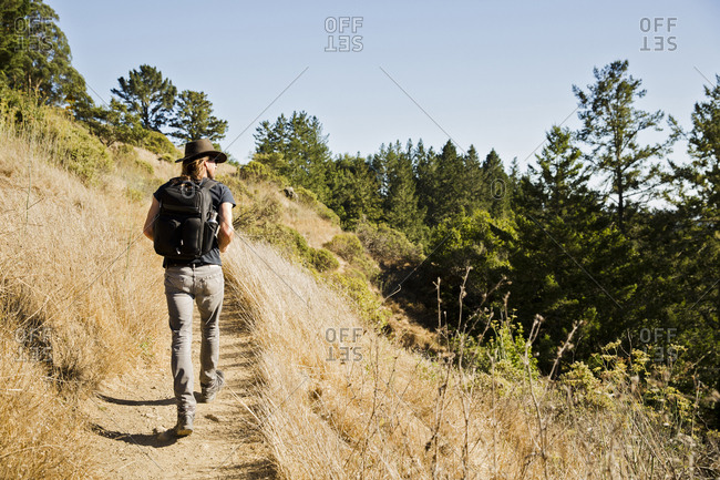 Rear view of man walking on trail in forest