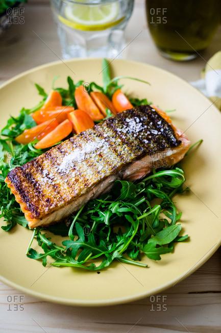 Seasoned salmon on bed of leafy salad greens
