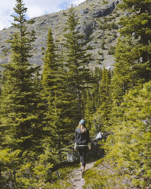 Woman walks through woods on beaten path